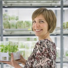 Judith Felten Researcher Department of Forest Genetics and Plant Physiology